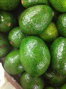 'Fuerte' avocado